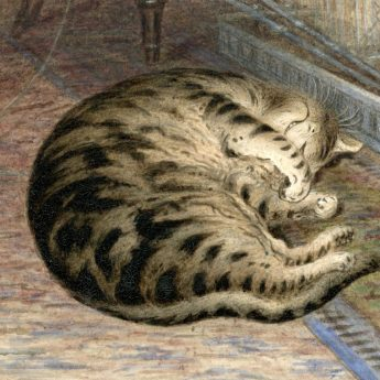 Watercolour of a tabby cat, 19th century
