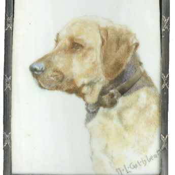Miniature painting of a golden labrador by Margot Lindsay Cuthbert