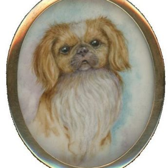 Miniature portrait of a pekingese dog in the original case
