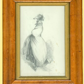 Pencil drawing of a dog in fancy dress